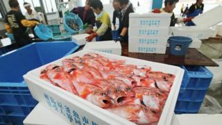 ปลาฟุกุชิมะ