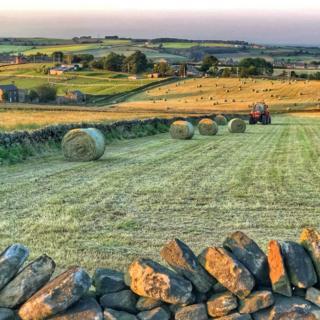 Farmland in Penistone, South Yorkshire