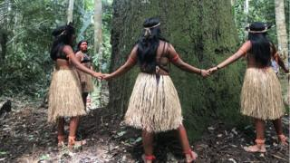 Technology Young girls from the Arara-Karo tribe offer a prayer to an old tree in the Amazon rainforest