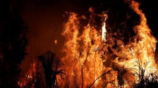 Incendio en la Amazonía.