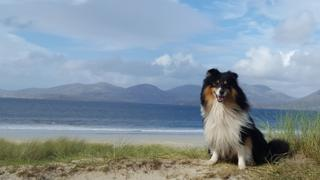 On holiday in Harris last week