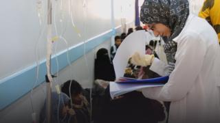 Doktarii koleeraa yaalaa jiru