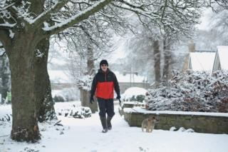 A man and his dog walk in the snow