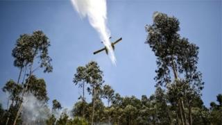 Літак гасить пожежу