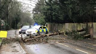 Police attending the scene of a fallen tree blocking Furze Platt Road, Maidenhead
