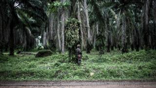 A Tanzanian UN peacekeeper on patrol in the area of Beni, DR Congo - Tuesday 13 November 2018