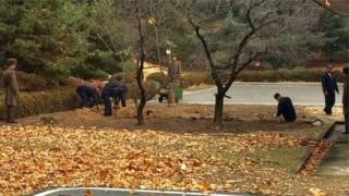 Một nhà ngoại giao Mỹ ở Nam Hàn đăng trên Twitter một bức hình chụp binh sĩ đào hào
