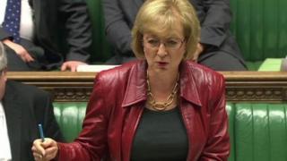 Energy Minister Andrea Leadsom