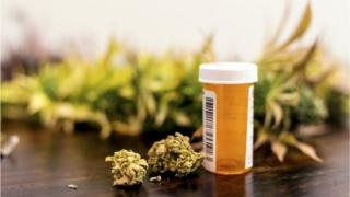 file picture of cannabis and prescription bottle