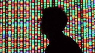 基因塑造了我們的身份,但不是唯一的決定因素。