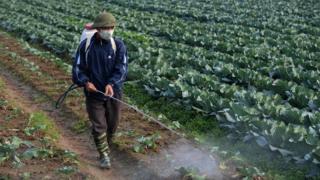 Việt Nam, Mỹ, môi trường, sức khỏe