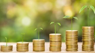 Pilhas de moedas com mudas de plantas em cima