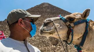 A camel guide stands in front of the Great Pyramid at Giza, Egypt (1 July 2020)
