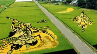 日本稻田文化(圖片來源:くろふね)