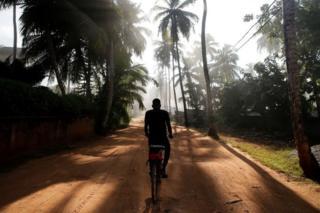 A man rides a bike between coconut palms in Abidjan, Ivory Coast.