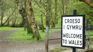 Forest with Welcome to Wales sign