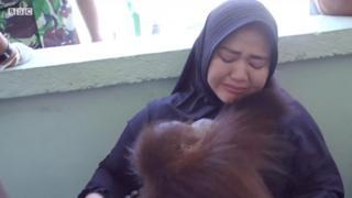 Indonesia giải cứu đười ươi từ nhà người dân