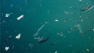 Plastic pollution in the ocean problem.