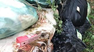 Rubbish dumped in a field
