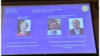 Нобелевская премия по химии присуждена ученым Фрэнсис Арнольд, Джорджу Смиту и Грегори Винтеру
