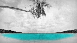 Paradise Papers beach