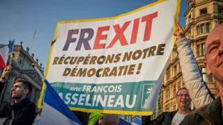 Демонстрация французских евроскептиков в поддержку брексита