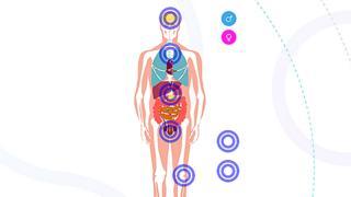 Učenje o tumorima po sistemu organa