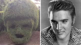Hedge shaped like Elvis Presley's head and Elvis Presley