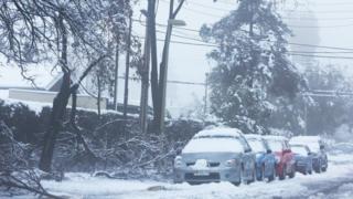 Autos con nieve encima.