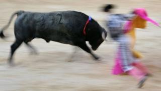 Generic photo of bull and matador