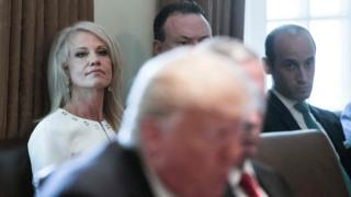 kellanne conway at the White HOuse