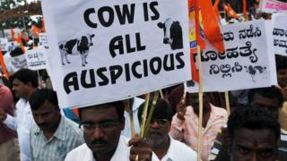 A Hindu at a demonstration in support of the cow slaughter ban bill passed in the Karnataka state Legislative Assembly in Bangalore on July 20, 2010.
