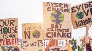 climate change placards