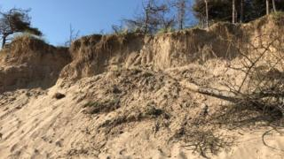 The collapsed sand dune on Newborough Beach, Anglesey