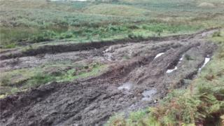 Damaged area in southern Snowdonia