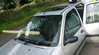 Timber through windscreen