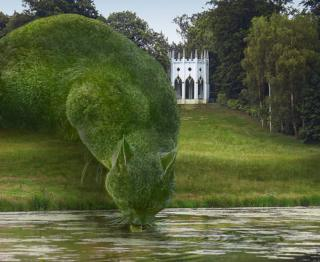 Topiary cats 'seen by millions' on Facebook