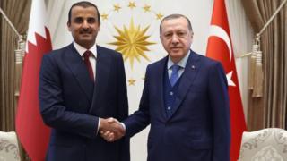 أردوغان يستقبل أمير قطر في المجمع الرئاسي بأنقرة