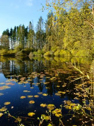 Loch of Daldorn