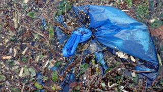 매년 전 세계적으로 5000억 개 이상의 플라스틱 봉투가 생산된다
