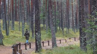 سيدة تسير في متنزه في لاتفيا