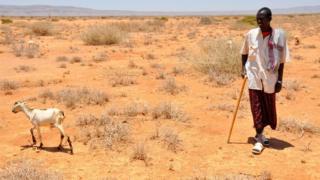 Farmer dey walk for dry land