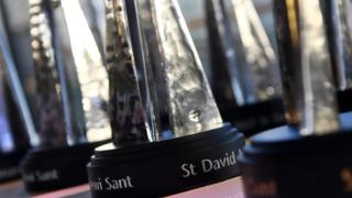 St David Award trophy