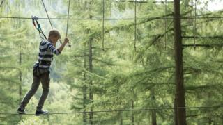 A boy making his way across a Go Ape obstacle
