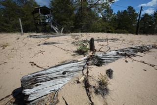 Una dilapidada torre de observación y alambre de púas en la isla de Mudyug (Foto: Kirill Iodas)