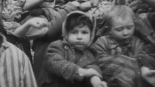 дети Освенцима