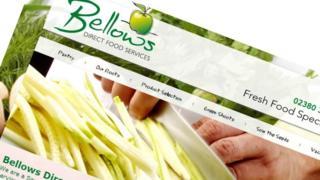 SJ Bellows website