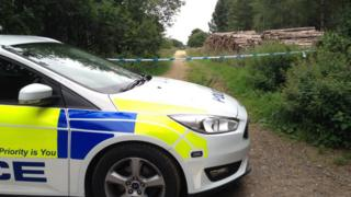 Police vehicle near East Harling