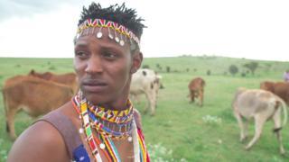 Richard Turere posa para foto em um campo verde onde o gado aparece pastando