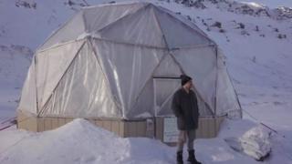veggies at the edge of the Arctic circl